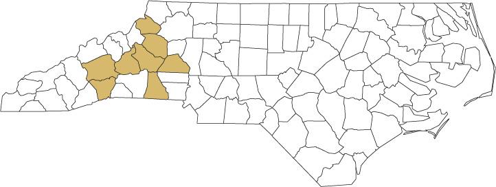Artisan Beverage Group - Service Areas - Western NC