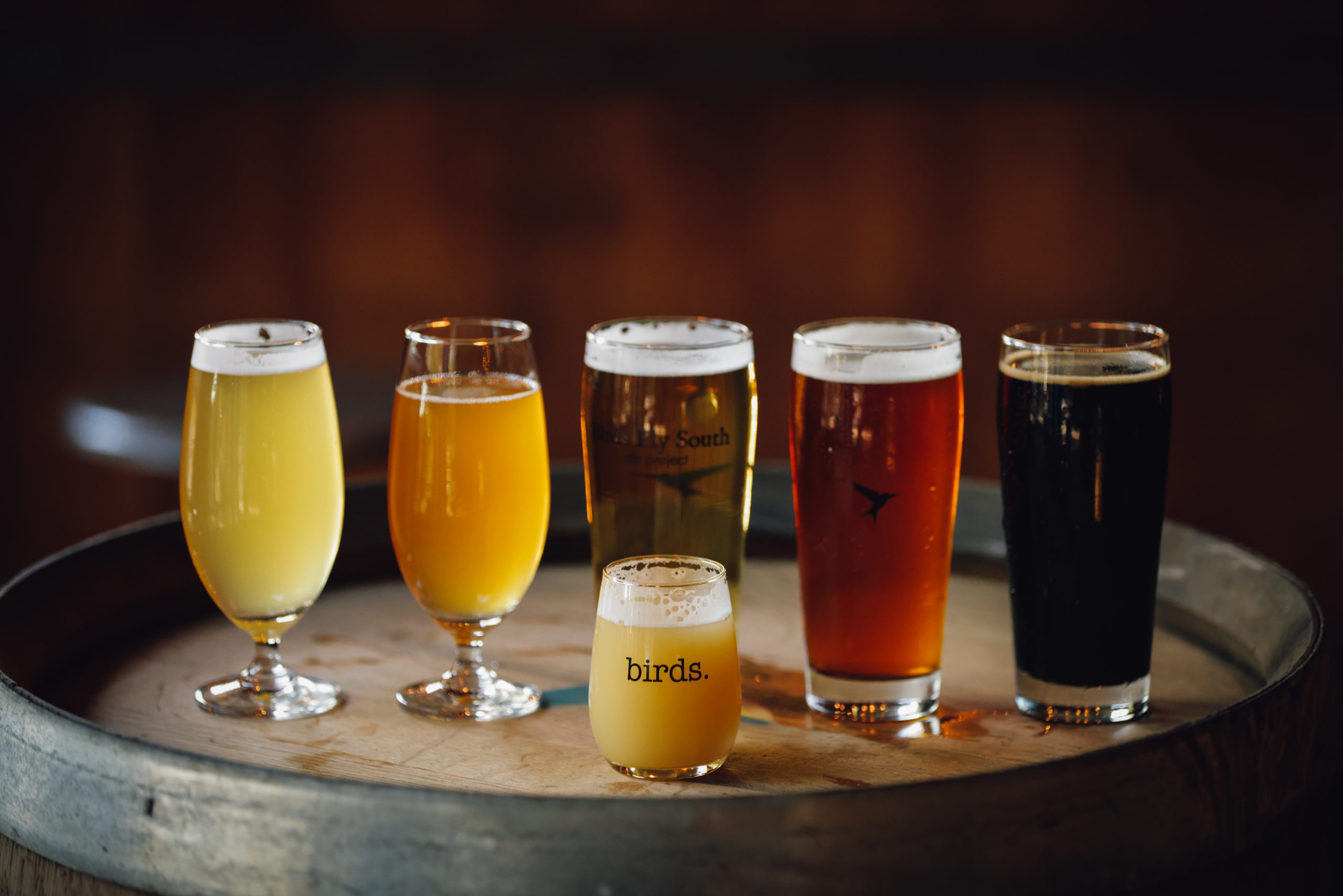 birds fly south ale project | Greenville, SC